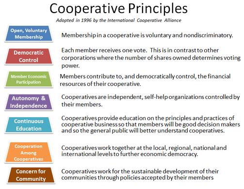 seven coop principles